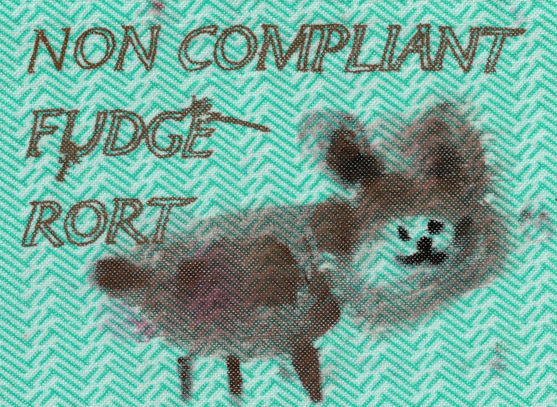 Non Compliant Fudge Rort